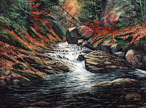 Frank Wilson - Autumn Brook