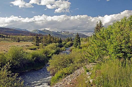 James Steele - Breckenridge Colorado