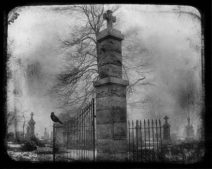 Gothicolors Donna Snyder - Entrance