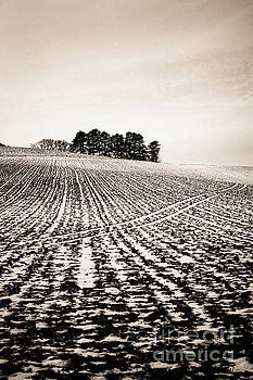 BERNARD JAUBERT - Field with snow-covered furrows. Auverge. France. Europe.