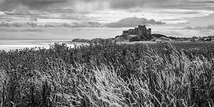 David Pringle - Bamburgh Castle