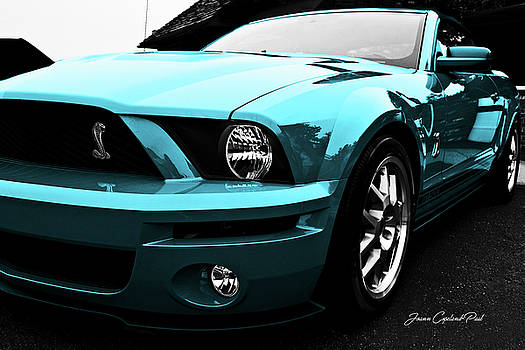 Joann Copeland-Paul - 2010 Turquoise Ford Cobra Mustang GT 500