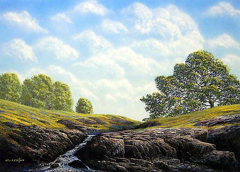 Frank Wilson - Flowering Meadow