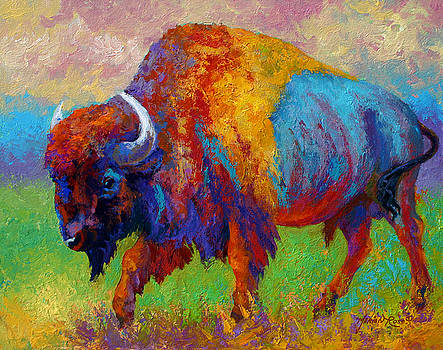 Marion Rose - A Journey Still Unknown - Bison