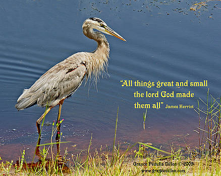 Grace Dillon - All Things Great and Small