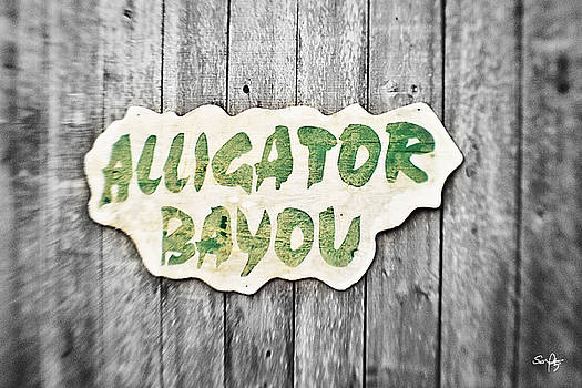Scott Pellegrin - Alligator Bayou