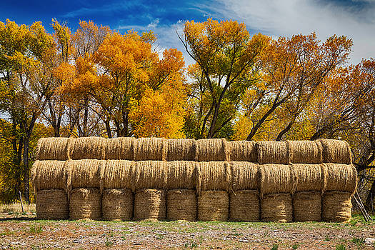 James BO  Insogna - Autumn Hay Bales