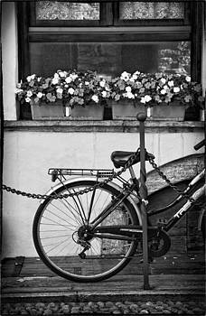 Silvia Ganora - Bicycle with flowers