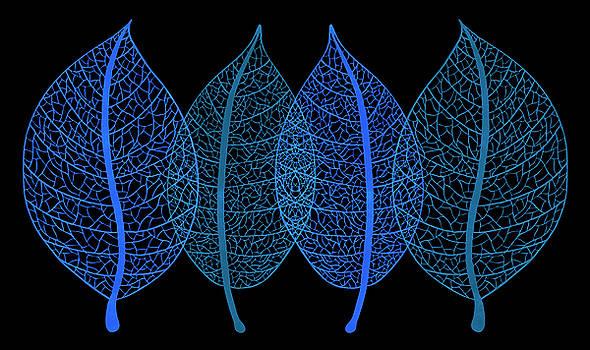 Frank Tschakert - Blue Leaves