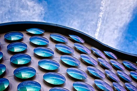 Christopher Holmes - Blue Polka-Dot Wave