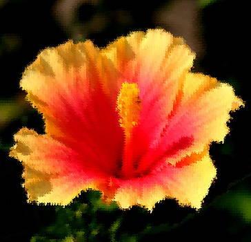 Diane Merkle - Bright Hibiscus