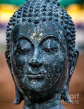 Adrian Evans - Buddha
