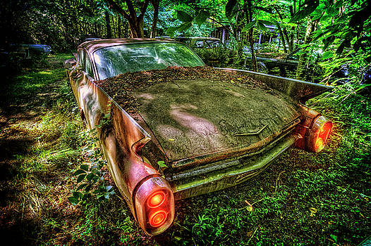Debra and Dave Vanderlaan - Cadillac in the Woods