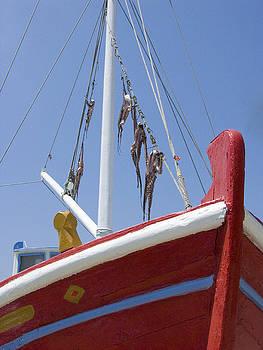 Sandra Bronstein - Catch of the Day in Mykonos
