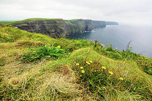 Mike Shaw - Cliffs of Moher