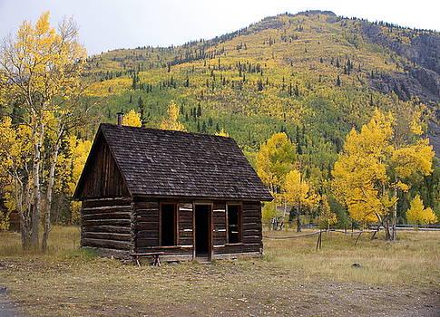 Marty Koch - Colorado Cabin