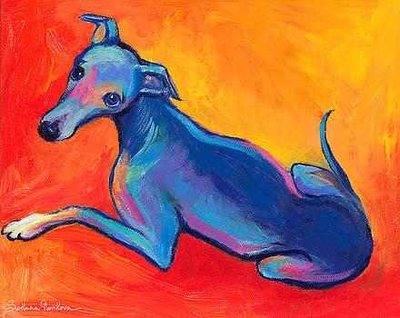 Svetlana Novikova - Colorful Greyhound Whippet dog painting