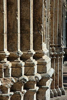 Sami Sarkis - Columns creating the facade of a gothic-style church