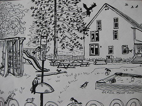 Stella Sherman - Count the Fifteen Birds