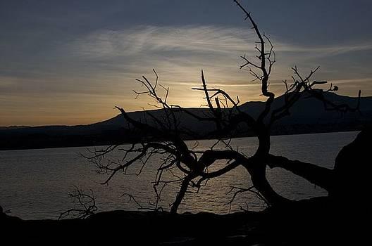 Bonnes Eyes Fine Art Photography - Dark Mountain