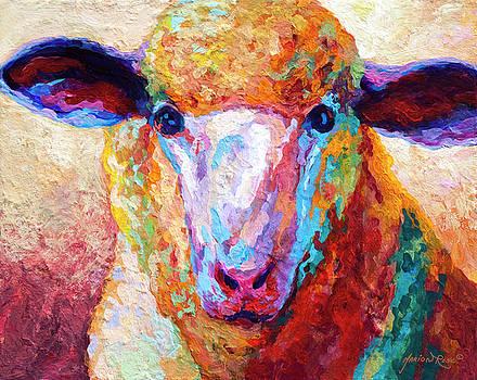 Marion Rose - Dorset Ewe