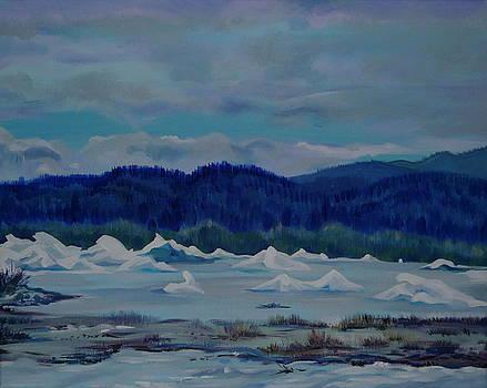 Anna  Duyunova - Drifting Alaska