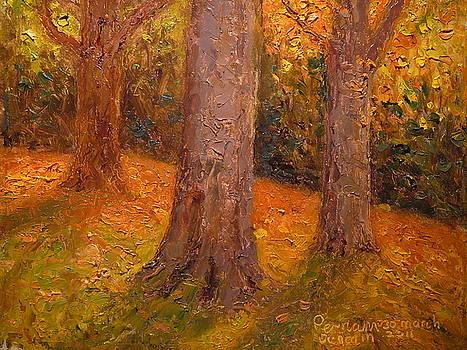 Terry Perham - Early Autumn 2011