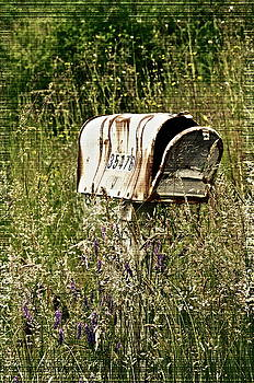 Gwyn Newcombe - Empty Mailbox at 35476