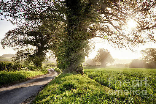 Simon Bratt Photography LRPS - English country road and sunrise