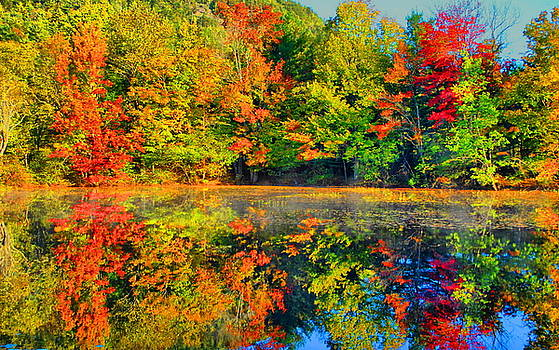Emily Stauring - Fall Reflected