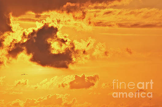 Angela Doelling AD DESIGN Photo and PhotoArt - Fire on sky