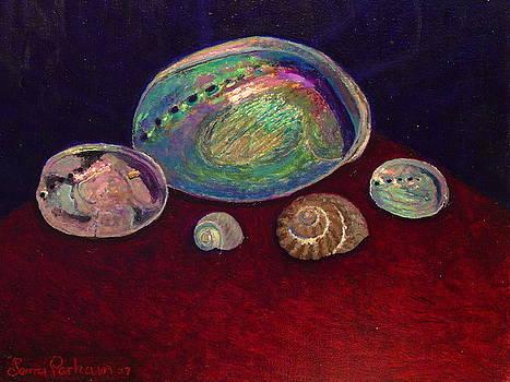 Terry Perham - Five shells