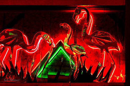 Christopher Holmes - Flamingos In Lights