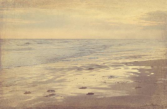 Svetlana Novikova - Galveston Island sunset seascape photo