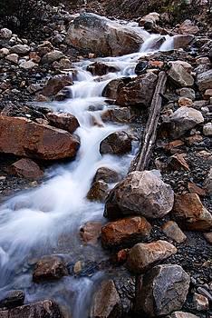 Larry Ricker - Glacial Stream