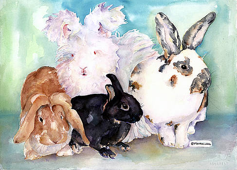 Pat Saunders-White - Good Hare Day