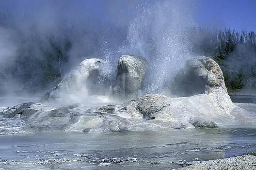 Sandra Bronstein - Grotto Geyser - Yellowstone National Park
