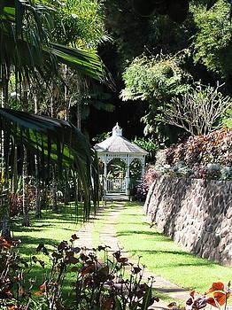 Diane Merkle - Hawaiian Hideaway