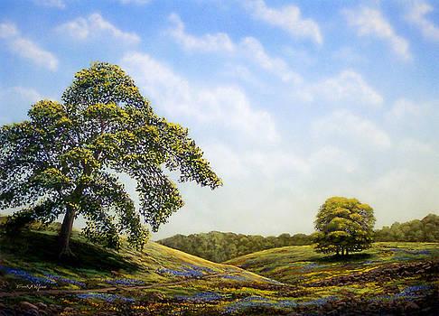 Frank Wilson - In Bloom