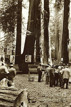 California Views Mr Pat Hathaway Archives - In the Redwoods, Bohemian club,  August 1955