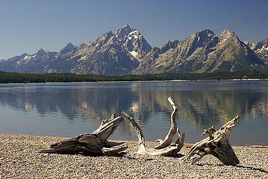 Marty Koch - Jackson Lake 1
