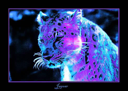 Nick Gustafson - Jaguar