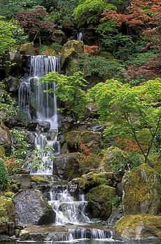 Sandra Bronstein - Japanese Garden Waterfall