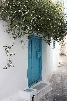 Yvonne Ayoub - Jasmine and Blue Door