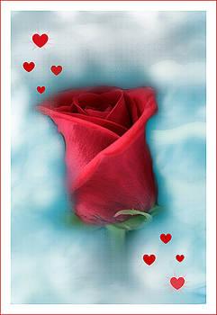 Linda Sannuti - Love is in the air