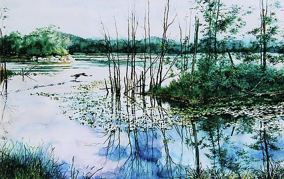 Hanne Lore Koehler - Northern Reflections