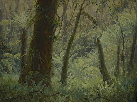 Terry Perham - NZ Bush Interior 1976