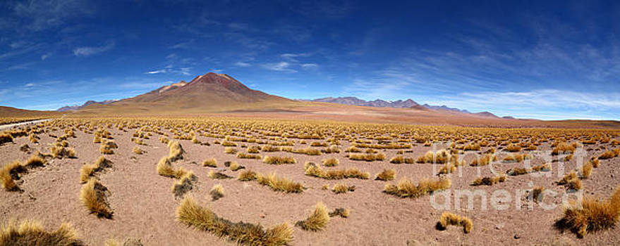 James Brunker - Panoramic View of Tatio Volcano and Atacama Desert Grassland Chile