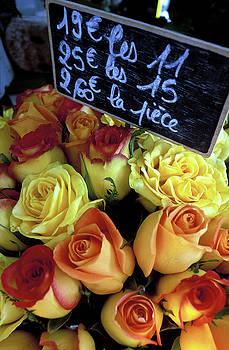Kathy Yates - Paris Roses