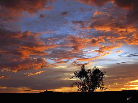 Kurt Van Wagner - Picacho Peak Sunset II